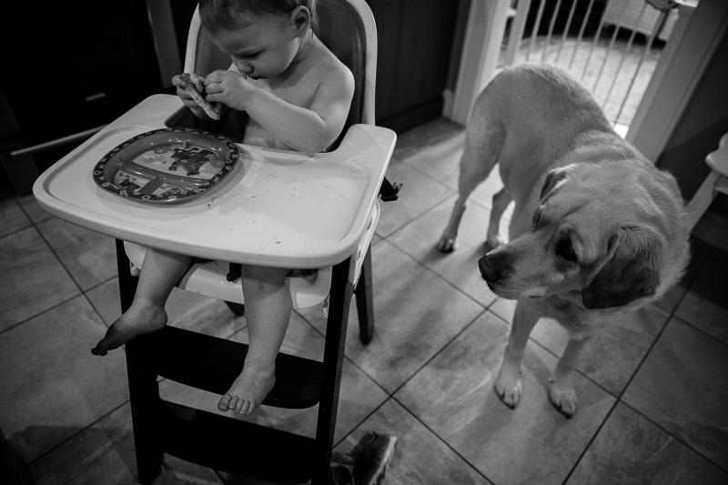 Documentary Family Photographer Newton