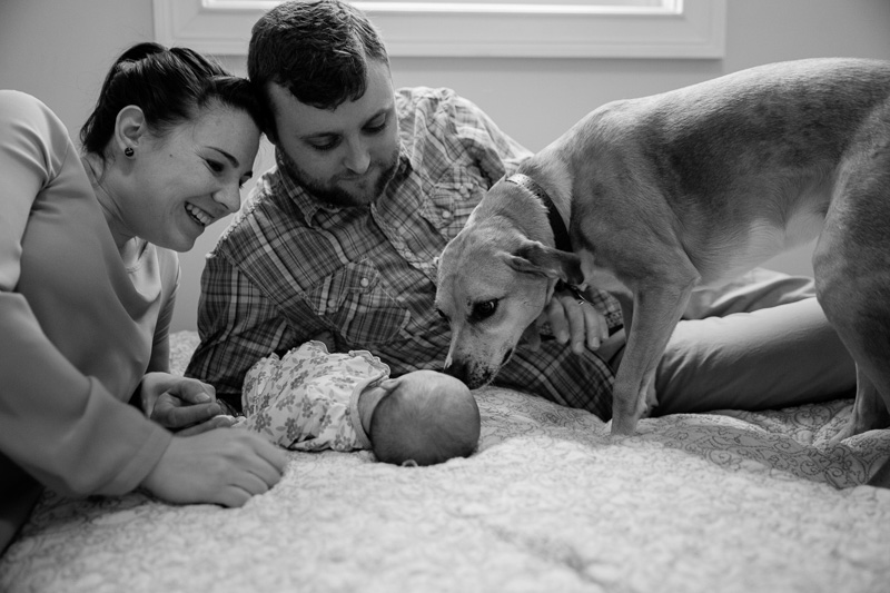 Newborn Photographer Massachusetts