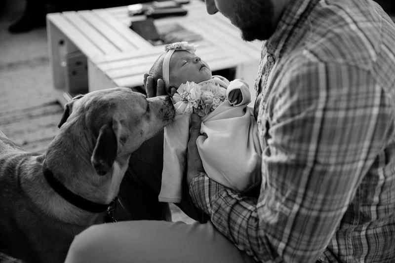 Newborn Photographer Waltham