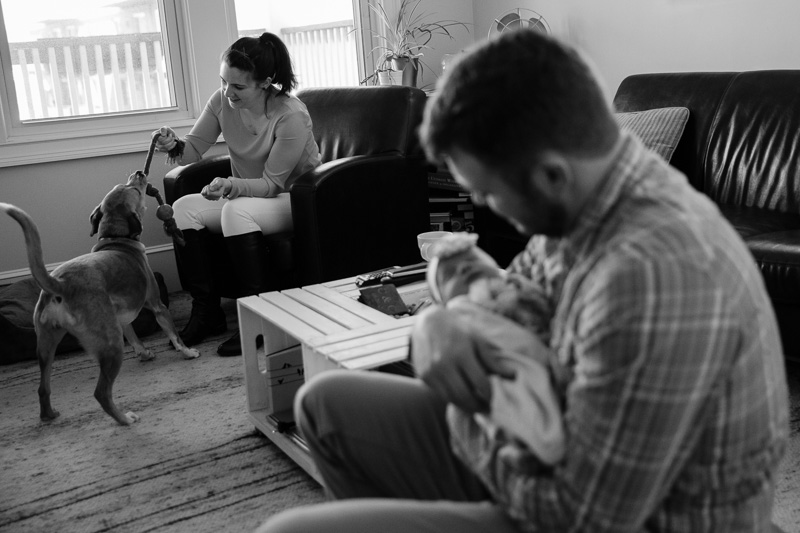Newborn Photographer Arlington